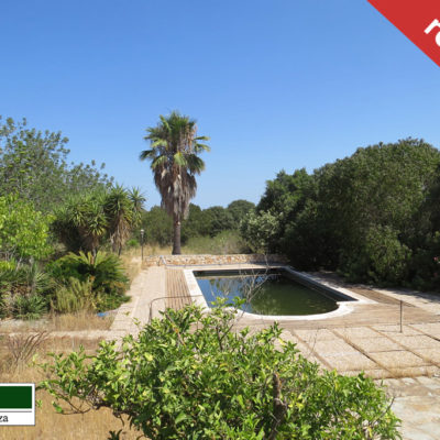 Spacious renovation property at San Agustin with a lot of potential
